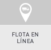 FLOTA_INTRA